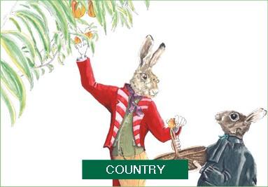 Country - Jean-Yves du Boispéan